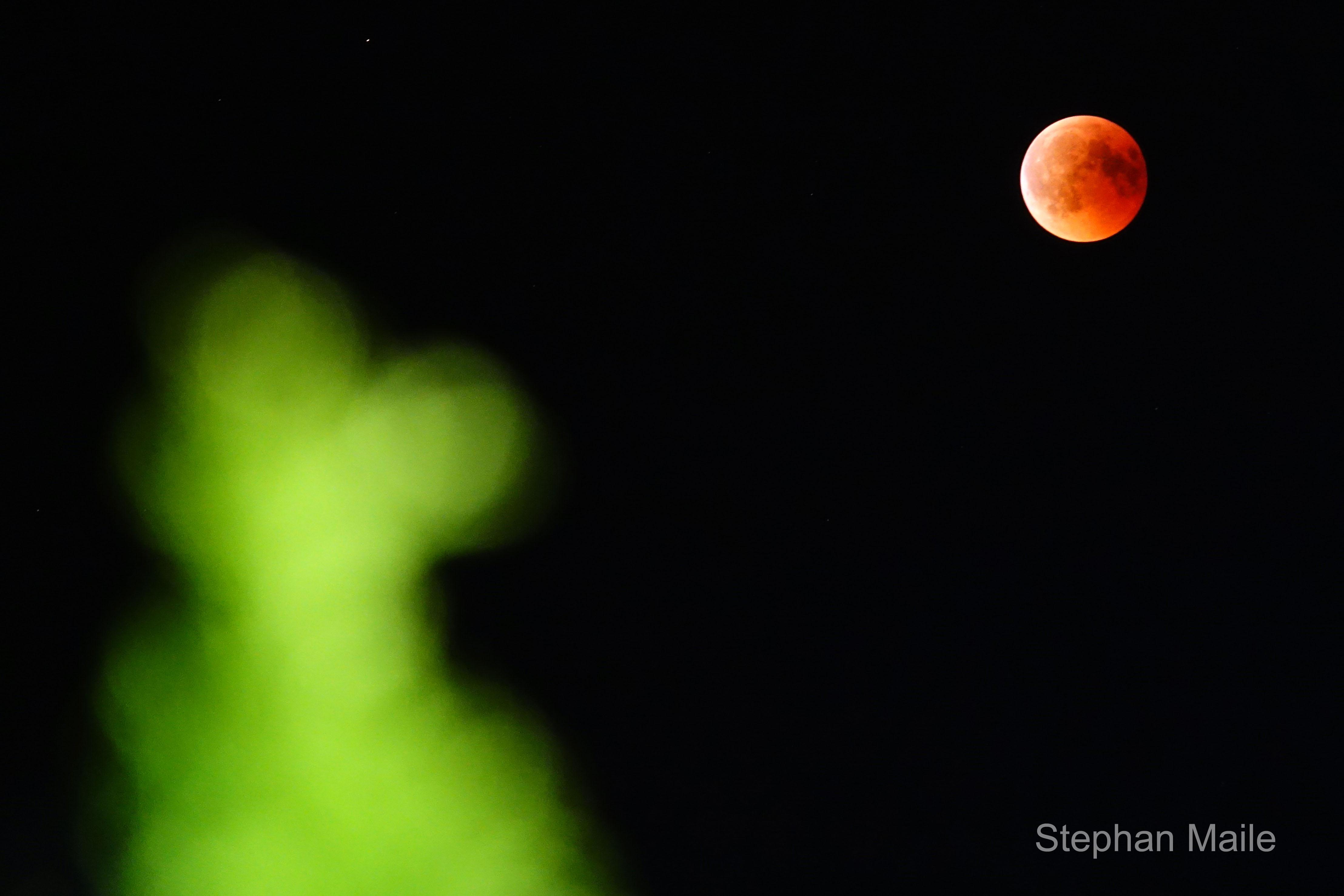 Mond_02